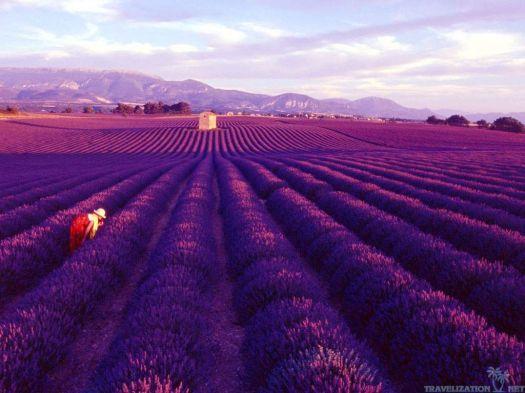 Taki widok to balsam dla zszarganych nerwów zapracowanych mieszkańców wielkich miast. :) © www.mostbeautifulplacesintheworld.org