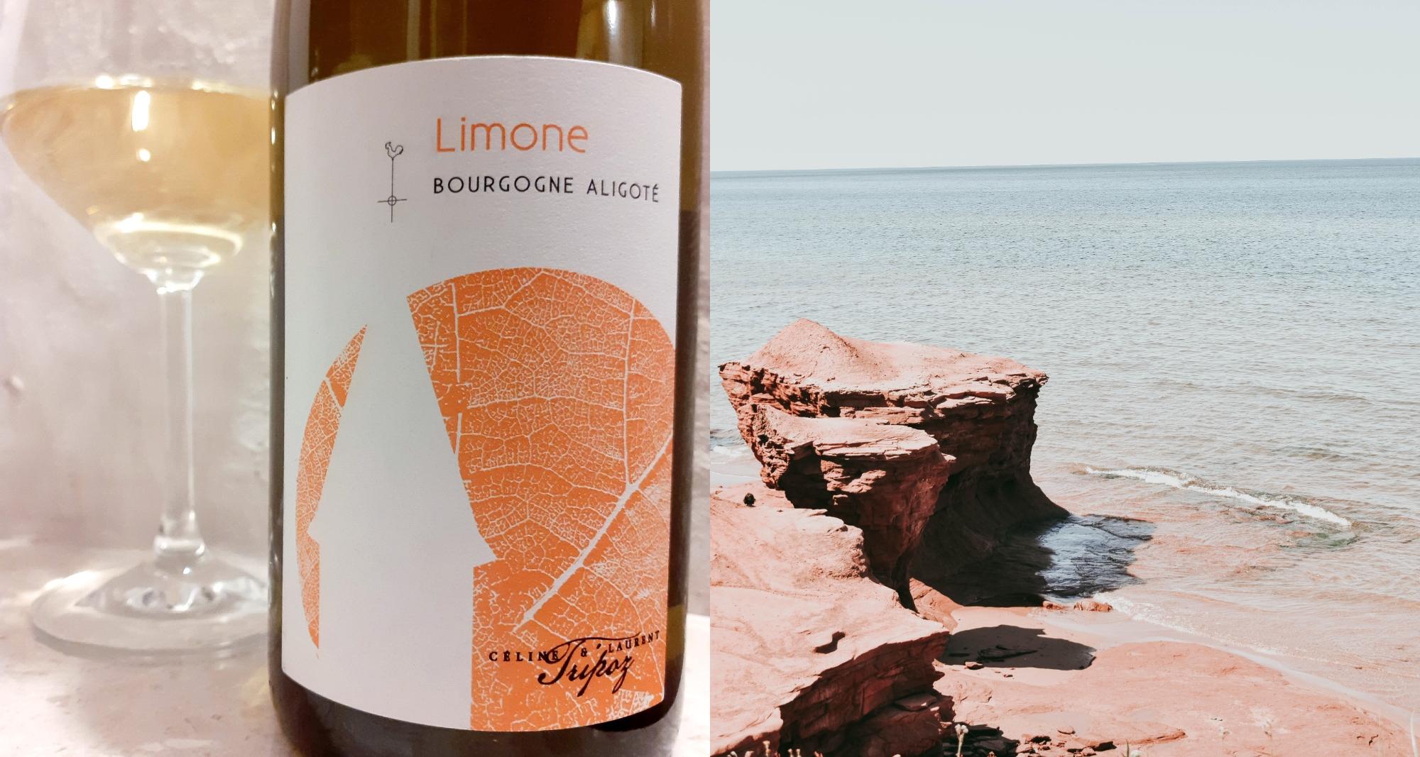 Domaine Céline & Laurent Tripoz Limone Bourgogne Aligoté 2018